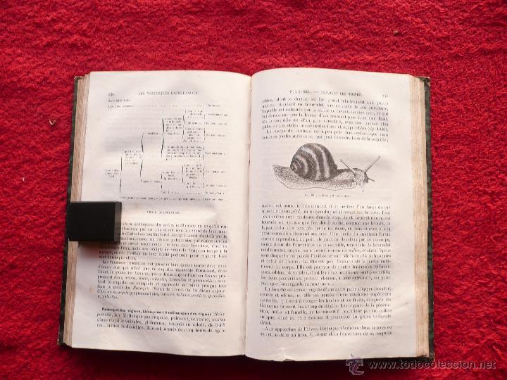 Libros antiguos: - Foto 23 - 52735768