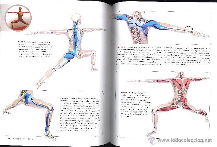 yoga. anatomía para vinyasa flow y posturas de - Comprar en ...