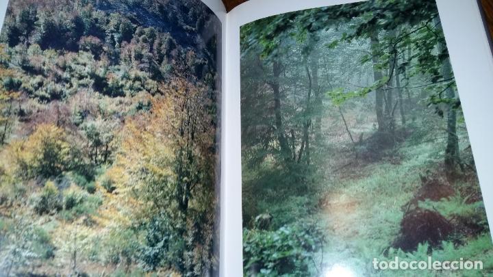 Libros de segunda mano: - Foto 6 - 89862884