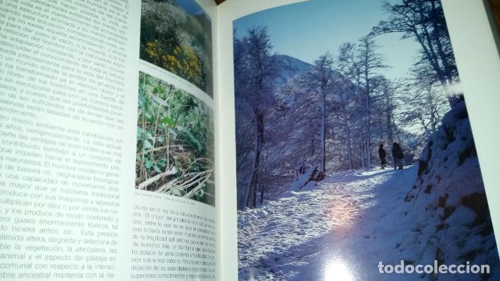 Libros de segunda mano: - Foto 7 - 89862884