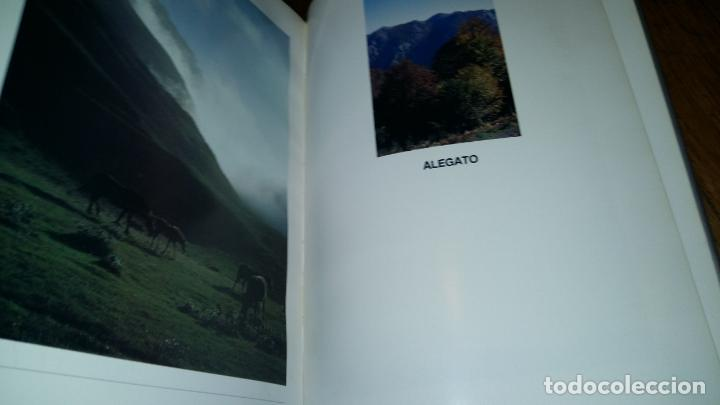 Libros de segunda mano: - Foto 14 - 89862884