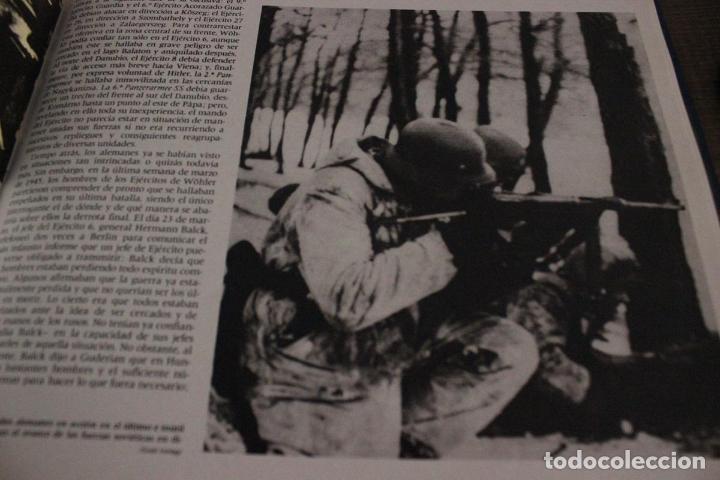 Militaria: - Foto 15 - 92848720