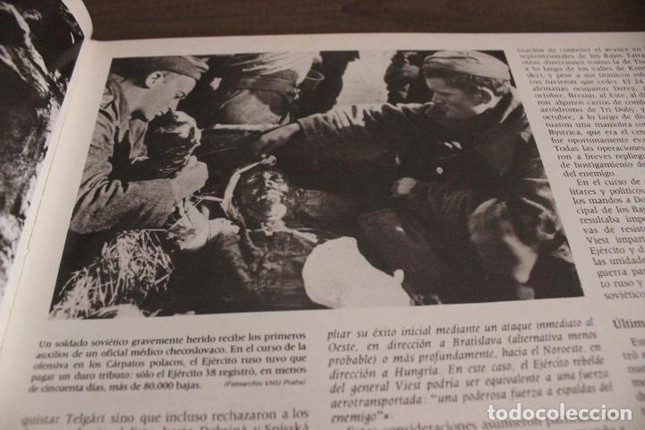 Militaria: - Foto 25 - 92848720