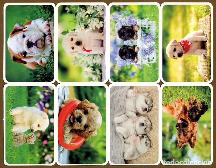 Coleccionismo Calendarios: - Foto 8 - 112157371