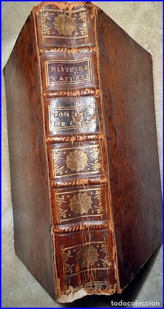 Libros antiguos: - Foto 9 - 112473431