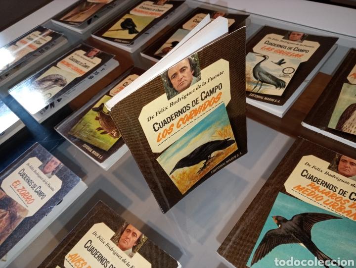 Cuadernos de campo de Félix Rodríguez de la Fuente