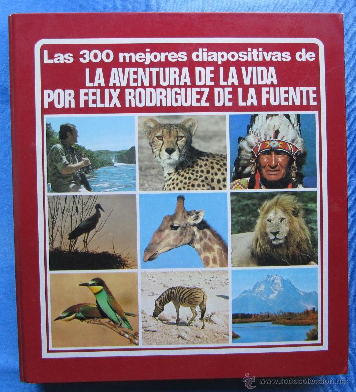 Diapositivas Félix Rodríguez de la Fuente