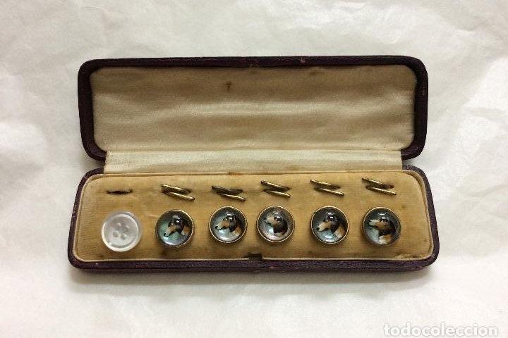 Botones de colección