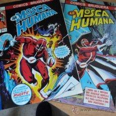 Tebeos: LA MOSCA HUMANA; NÚMEROS 1 Y 3. COMICS BRUGUERA; AÑO 1978. Lote 32442851