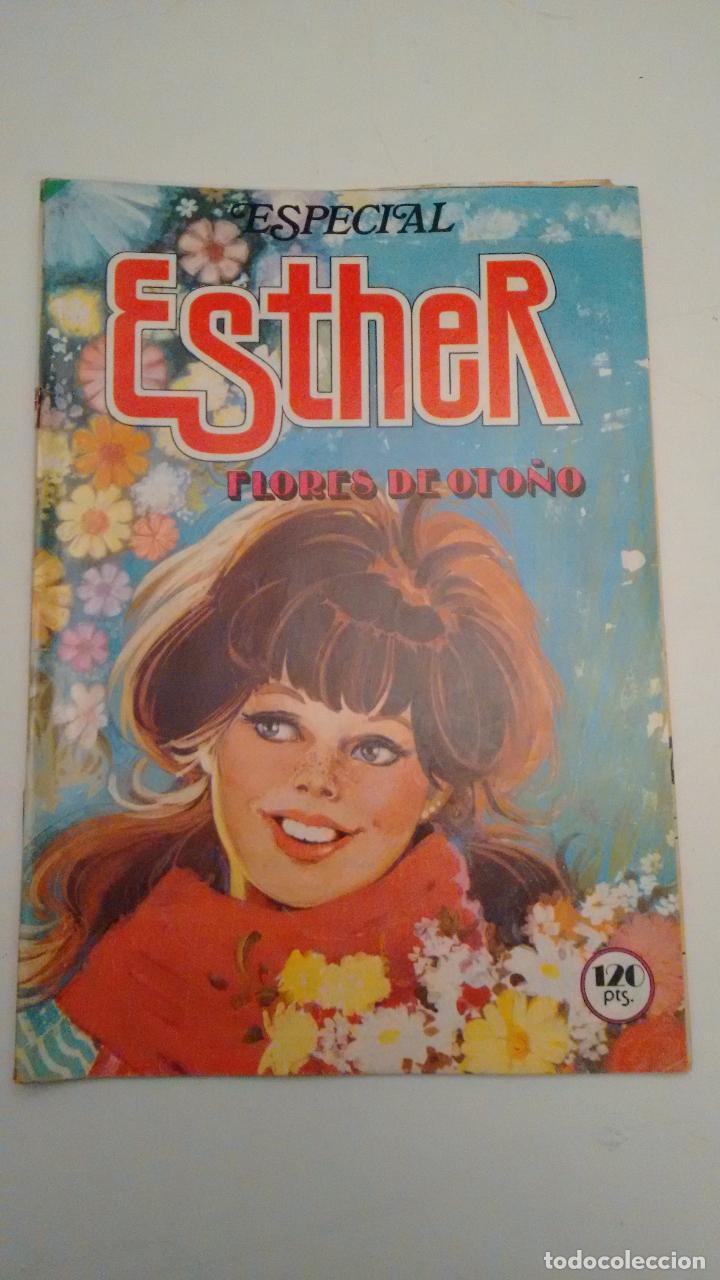 ESTHER REVISTA Nº 28 ESPECIAL FLORES DE OTOÑO. CON POSTER DE SILVIA. BRUGUERA 1983 (Tebeos y Comics - Bruguera - Esther)