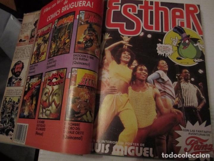 Tebeos: ESTHER. TU MEJOR AMIGA. GRAN SELECCION 4. EDITORIAL BRUGUERA, 1985. TAPA DURA. COLOR. 920 GRAMOS. - Foto 2 - 96338095