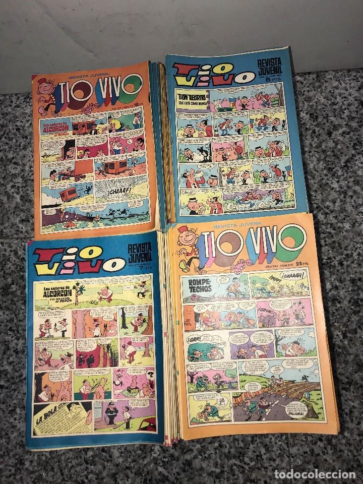 TIO VIVO LOTE DE MAS DE 822 NUMEROS COMO NUEVOS (Tebeos y Comics - Bruguera - Tio Vivo)
