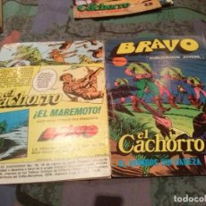 Tebeos: BRAVO. Nº 37. EL CACHORRO, Nº 19 EL HOMBRE SIN CABEZA. BRUGUERA 1976. Lote 145581822