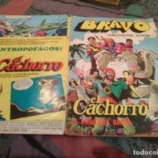 Tebeos: BRAVO- Nº 27 -EL CACHORRO- Nº 14-LA PRINCESA BIMBA- BRUGUERA 1976. Lote 146544090