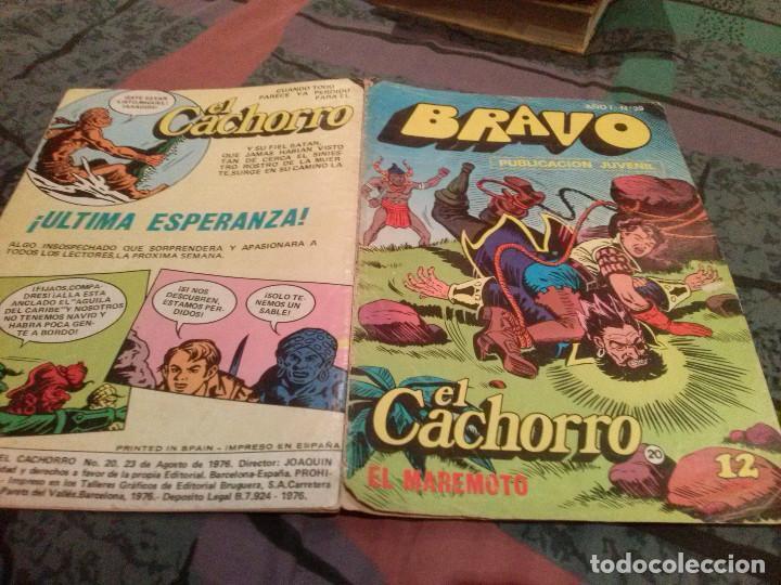 BRAVO-Nº 39 -EL CACHORRO- Nº 20 - EL MAREMOTO- BRUGUERA 1976 (Tebeos y Comics - Bruguera - Bravo)