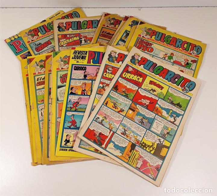 REVISTA JUVENIL. PULGARCITO. 17 EJEMP. EDIT. BRUGUERA. BARCELONA. 1958/1974. (Tebeos y Comics - Bruguera - Pulgarcito)