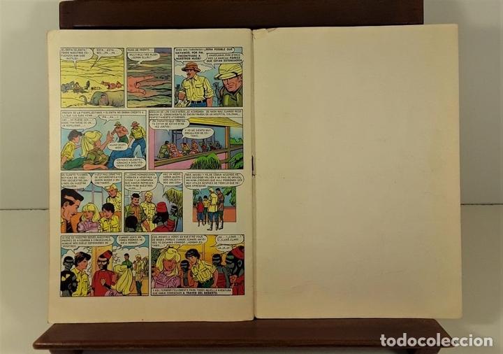 Tebeos: JOYAS LITERARIAS JUVENILES. 16 EJEMPLARES. EDIT. BRUGUERA. BARCELONA. 1970/76. - Foto 8 - 158638510