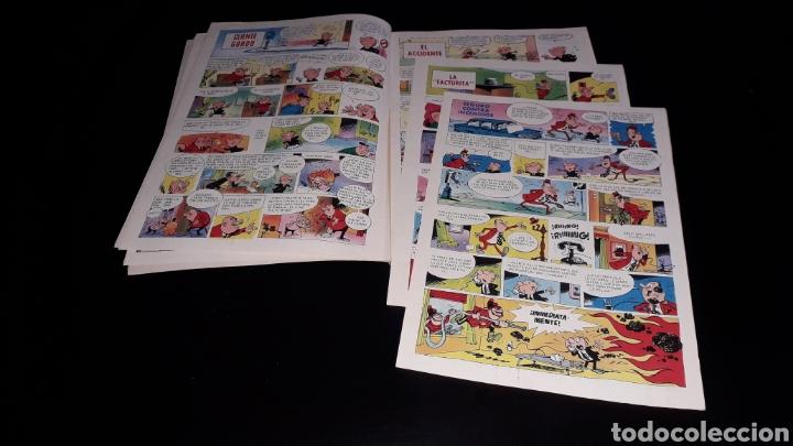 Tebeos: Nº 29 en lomo, Olé Bruguera, Olegario ¡Siempre en apuros!, Raf, 1ª primera edición 1971. - Foto 8 - 159472202