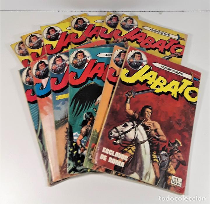 JABATO. 12 EJEMPLARES. EDITORIAL BRUGUERA. BARCELONA. 1980/81. (Tebeos y Comics - Bruguera - Jabato)