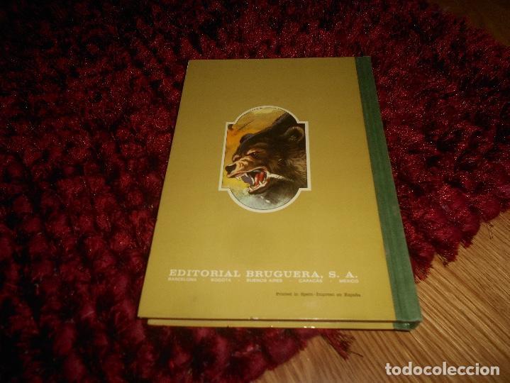 Tebeos: FAMOSAS NOVELAS VOLUMEN XVI - BRUGUERA. PRIMERA EDICIÓN 1979 - Foto 7 - 165946022