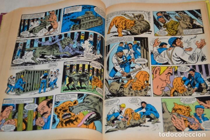 Tebeos: TOMO GRANDES NOVELAS ILUSTRADAS - Núm. 02 - BUEN ESTADO - 1ª Edición - Mayo 1984 - ¡Mira! - Foto 7 - 169218804