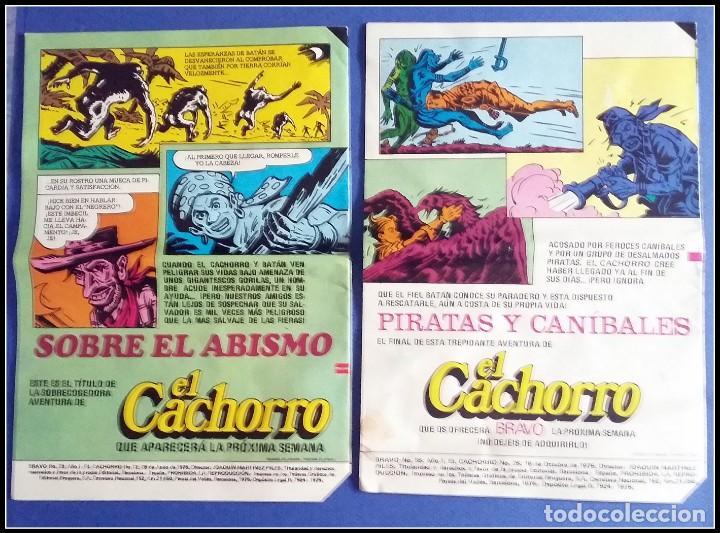 Tebeos: LOTE 18 TEBEO COMICS BRAVO EL CACHORRO EDITORIAL BRUGUERA - Foto 7 - 170367180