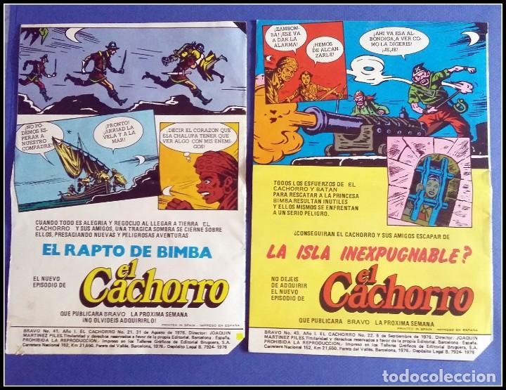 Tebeos: LOTE 18 TEBEO COMICS BRAVO EL CACHORRO EDITORIAL BRUGUERA - Foto 13 - 170367180