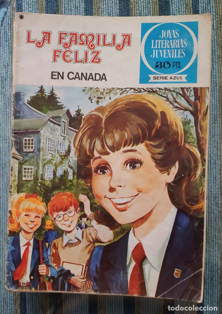 JOYAS LITERARIAS JUVENILES (SERIE AZUL) - LOTE CON 22 NUMEROS (BRUGUERA 1977) (Tebeos y Comics - Bruguera - Joyas Literarias)