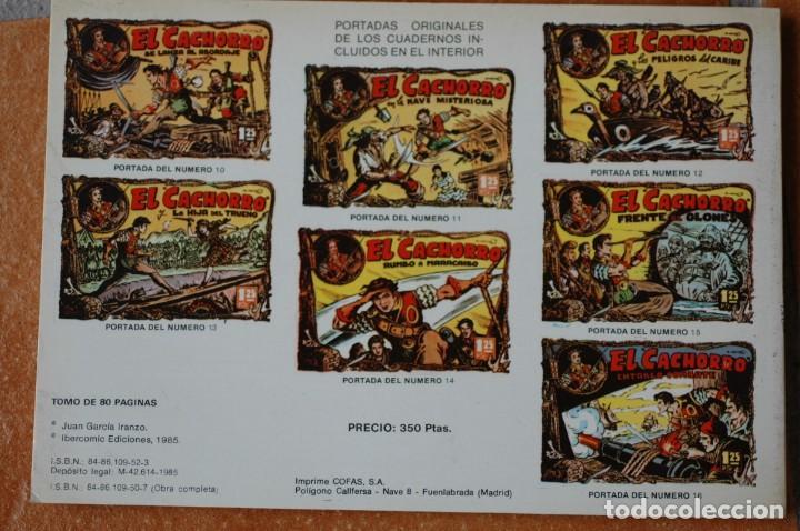 Tebeos: EL CACHORRO. TOMO NÚM. 2. POR IRANZO. IBERCOMIC EDICIONES 1985. 80 PAGS. B/N - Foto 2 - 172030979