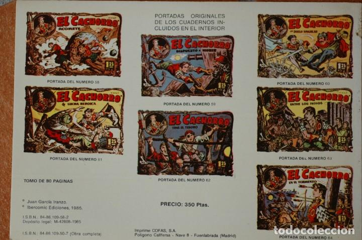Tebeos: EL CACHORRO. TOMO NÚM. 8. POR IRANZO. IBERCOMIC EDICIONES 1985. 80 PAGS. B/N - Foto 2 - 172031455