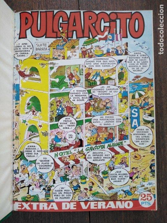 TOMO PULGARCITO DDT SUPER PULGARCITO SUPER DDT (Tebeos y Comics - Bruguera - Pulgarcito)