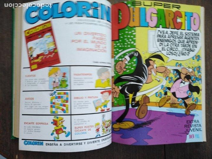 Tebeos: TOMO PULGARCITO DDT SUPER PULGARCITO SUPER DDT - Foto 3 - 175086608