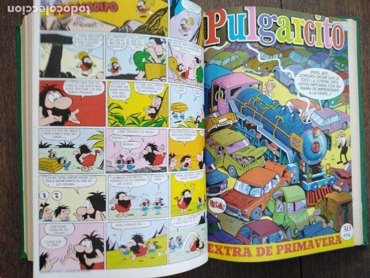 Tebeos: TOMO PULGARCITO DDT SUPER PULGARCITO SUPER DDT - Foto 5 - 175086608