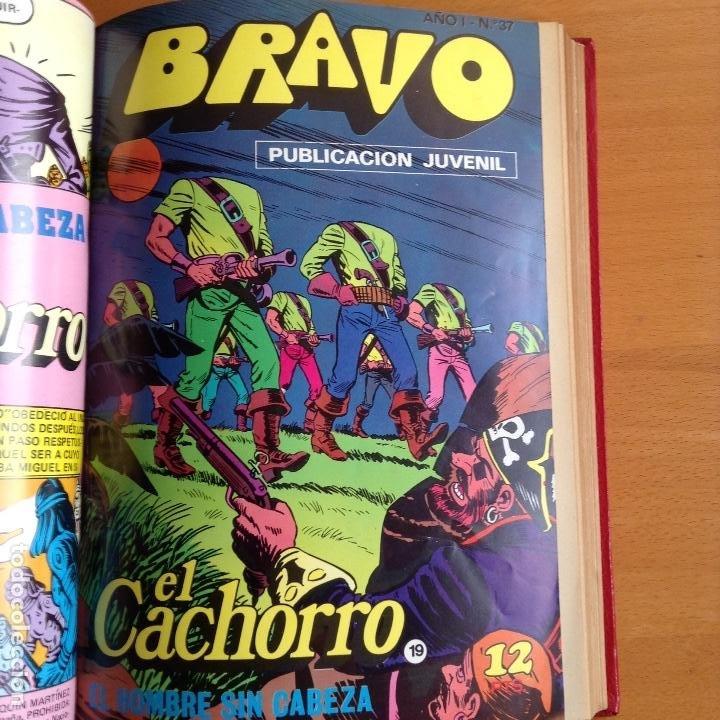 Tebeos: EL CACHORRO - BRAVO (BRUGUERA) 1976-1977 COMPLETA - Foto 4 - 199657958