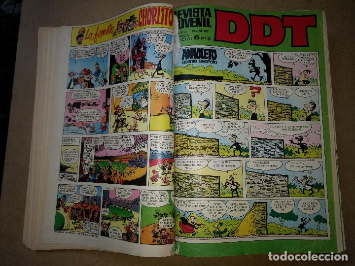 Tebeos: TOMO RETAPADO CON 33 DDT NºS del 141 al 224. BRUGUERA 1971. 6 PTS. BUEN ESTADO - Foto 6 - 209955978