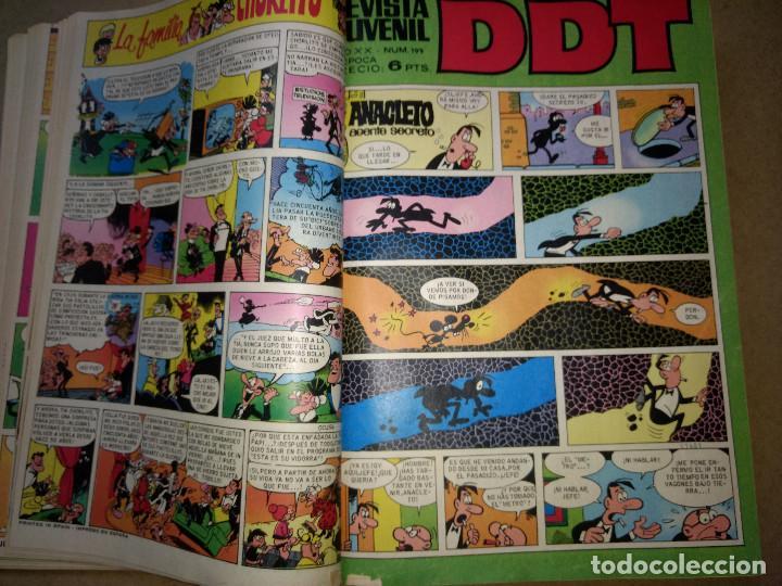 Tebeos: TOMO RETAPADO CON 33 DDT NºS del 141 al 224. BRUGUERA 1971. 6 PTS. BUEN ESTADO - Foto 8 - 209955978