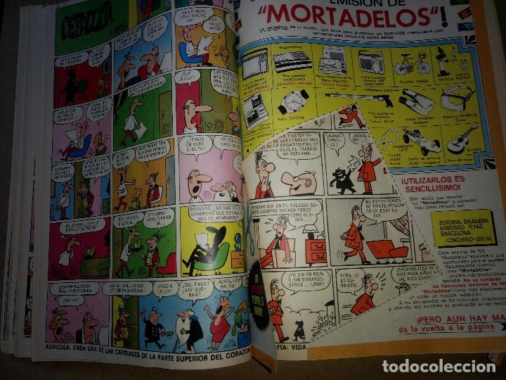 Tebeos: TOMO RETAPADO CON 33 DDT NºS del 141 al 224. BRUGUERA 1971. 6 PTS. BUEN ESTADO - Foto 37 - 209955978