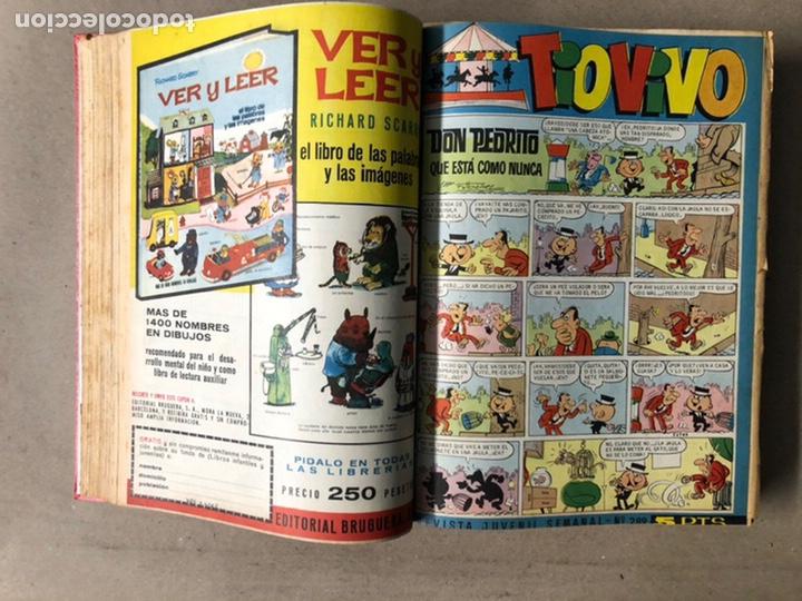 Tebeos: TOMO CON 24 TEBEOS TÍO VIVO (EDITORIAL BRUGUERA 1966/67) ENCUADERNADOS EN TAPA DURA. - Foto 15 - 210936319