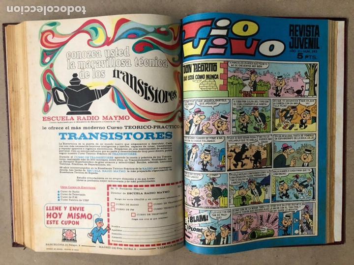 Tebeos: TOMO CON 15 TEBEOS TIO VIVO (EDITORIAL BRUGUERA 1967/68/69) ENCUADERNADOS EN TAPAS DURAS. - Foto 29 - 210939431