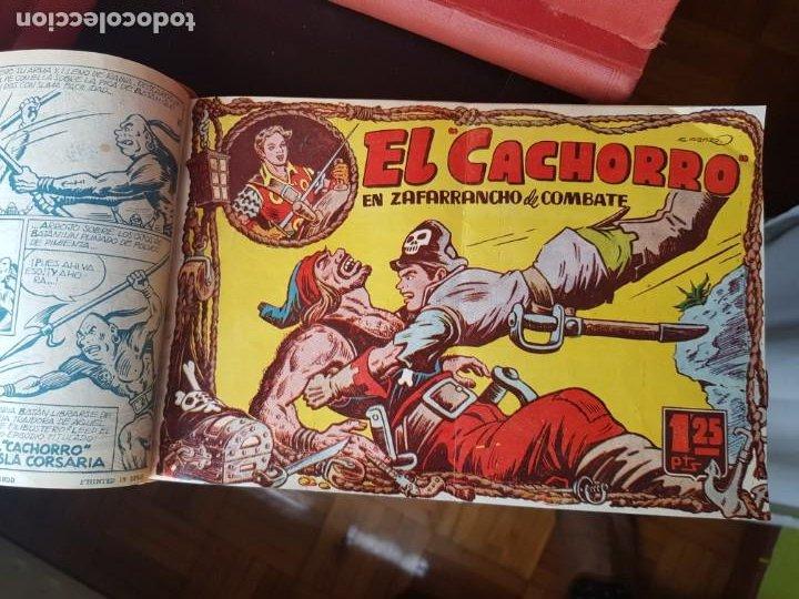 Tebeos: LOTE 64 TEBEOS/CÓMIC TOMO ORIGINAL EL CACHORRO N 19 A 175 BRUGUERA 1952 ENCUADERNADO - Foto 6 - 219325532