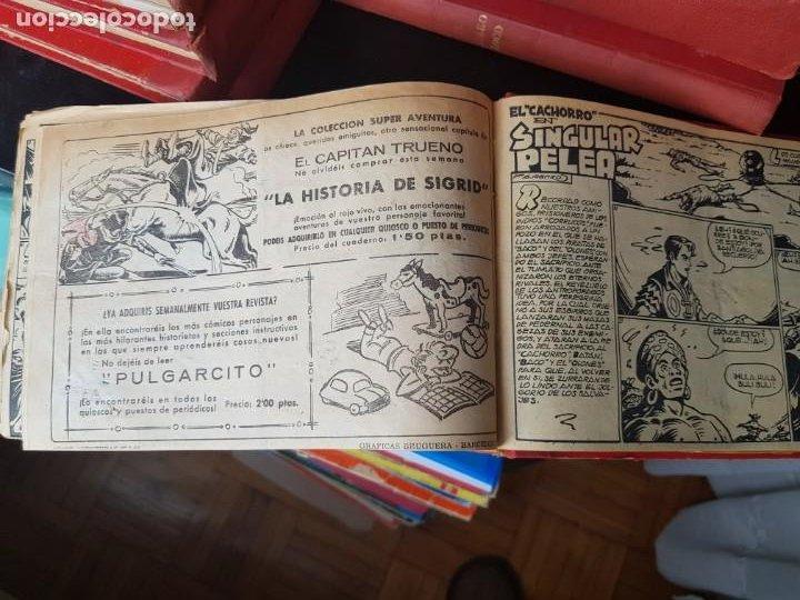 Tebeos: LOTE 64 TEBEOS/CÓMIC TOMO ORIGINAL EL CACHORRO N 19 A 175 BRUGUERA 1952 ENCUADERNADO - Foto 11 - 219325532