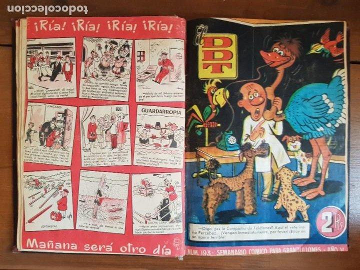 Tebeos: LOTE 25 TEBEOS/CÓMIC TOMO ORIGINAL DDT (5) 1955 BRUGUERA ENCUADERNADO - Foto 11 - 219594012