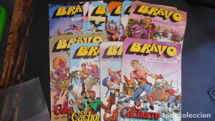 LOTE 11 EL CACHORO (Tebeos y Comics - Bruguera - Bravo)