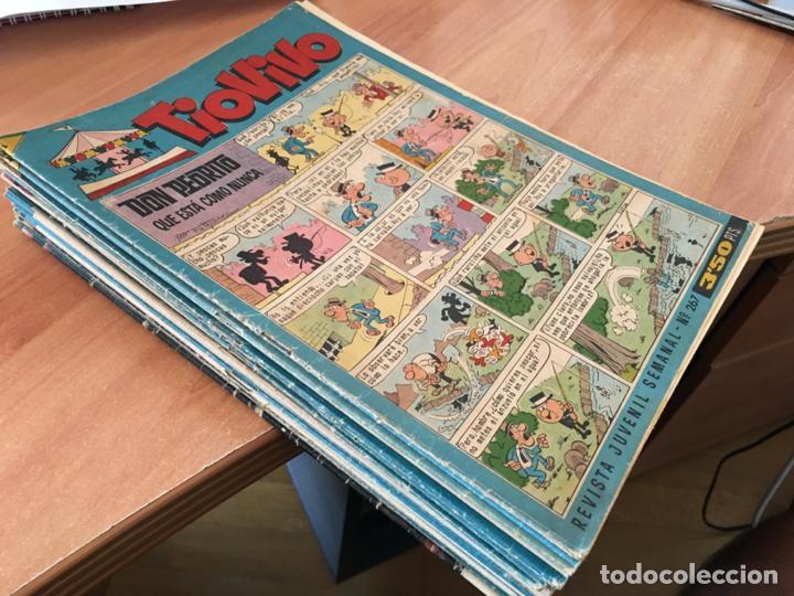 TIO VIVO LOTE 25 EJEMPLARES ENTRE 267 Y 389 (ED, BRUGUERA) (COIB147) (Tebeos y Comics - Bruguera - Tio Vivo)