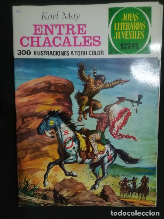 JOYAS LITERARIAS JUVENILES. Nº 45. DE 15 PTAS (Tebeos y Comics - Bruguera - Joyas Literarias)
