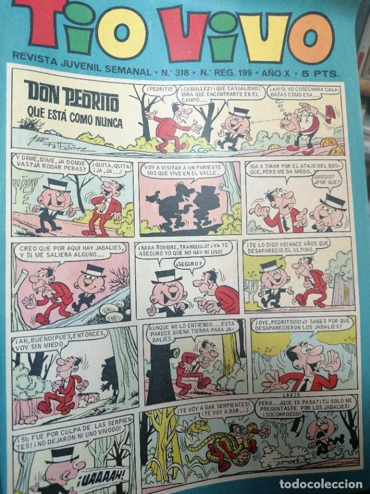 TÍO VIVO. N. 318 (Tebeos y Comics - Bruguera - Tio Vivo)