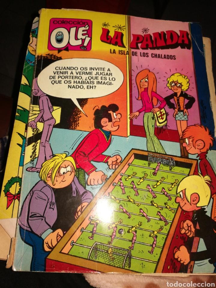 COMIC COLECCIO OLE LA PANDA EDIT BRUGUERA (Tebeos y Comics - Bruguera - Otros)