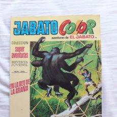 Tebeos: JABATO COLOR AÑO III N. 76 EN LA RED DE LA ARAÑA. Lote 229785670