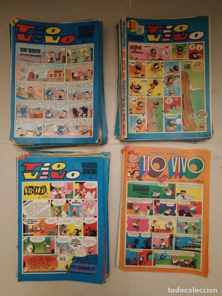 LOTE 55 TEBEOS TIO VIVO (Tebeos y Comics - Bruguera - Tio Vivo)