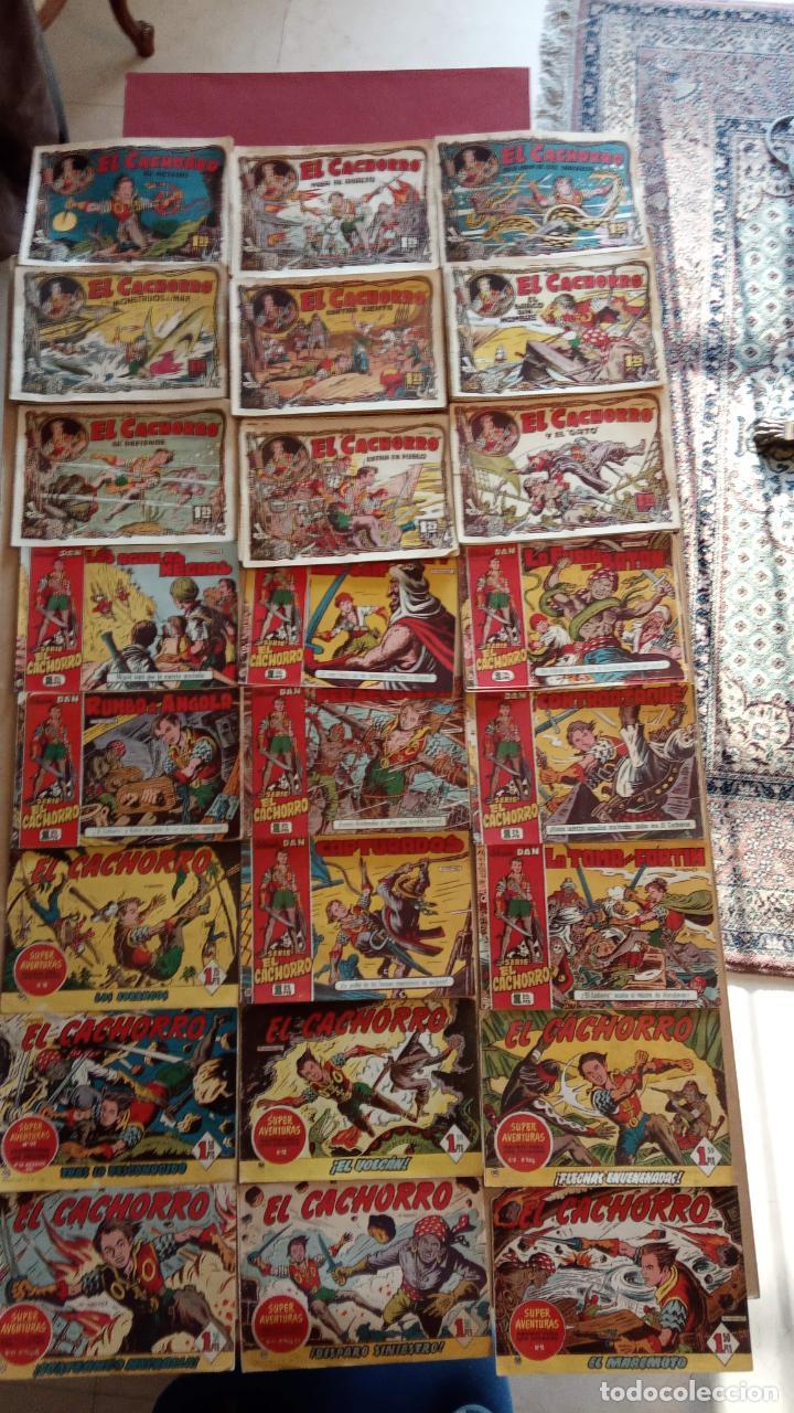 EL CACHORRO ORIGINALES 1951 BRUGUERA - 97 TEBEOS, VER TODAS LAS IMÁGENES DE PORTADAS Y CONTRAS (Tebeos y Comics - Bruguera - El Cachorro)